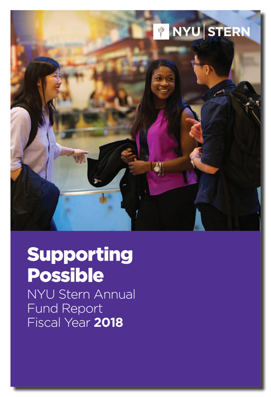 Cover of the 2018 Fiscal Year Stern Annual Fund Report