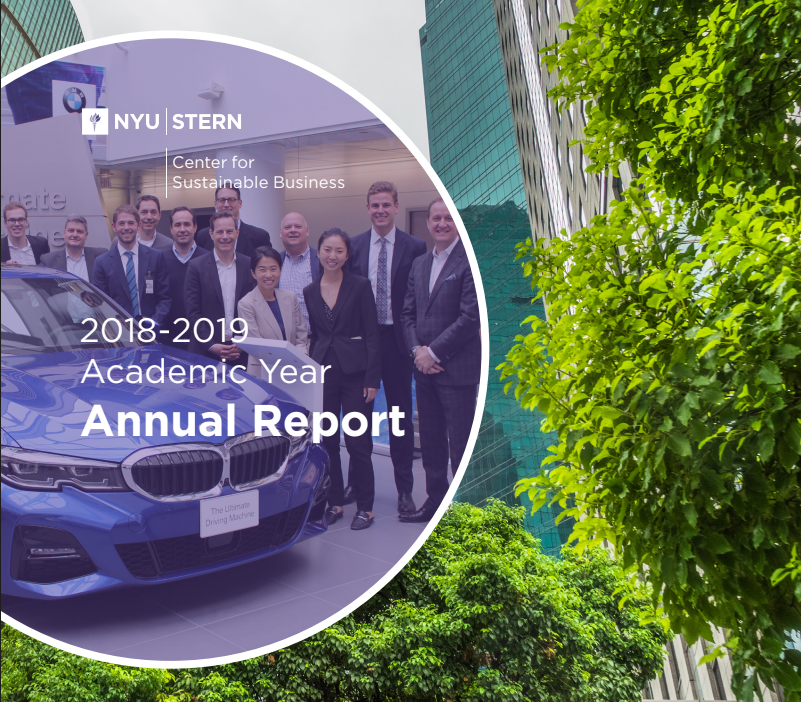 CSB Annual Report 2018 2019 cover shot