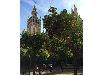 Matthew Wilson_Blog 4_Sevilla