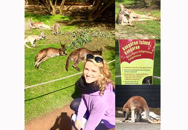 MBA student Cara Witt-Landefeld crouches down to look at five kangaroos sprawled out before her in the grass at Kangaroo Island..