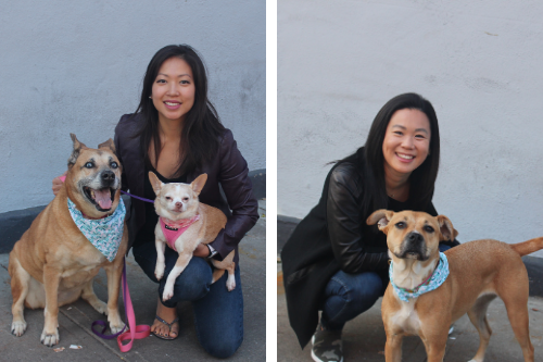 Tara Zedayko and Jessica Chu and their dogs