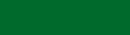 Green Accent Bar