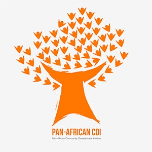 Pan-African Community Development Initiative