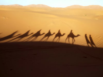 A shadow cast on the desert sand reveals a line of camels carrying riders.