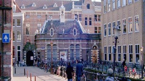 University of Amsterdam: Student Feedback - NYU Stern
