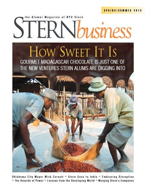 Sternbusiness cover for alumni page
