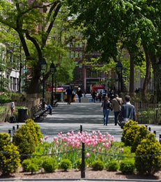Washington Square Park Article
