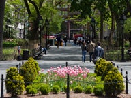 Washington Square Park Feature