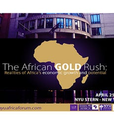 Stern in Africa Economic Forum