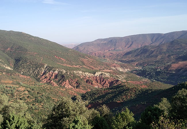 """Green shrubs dot red hills in the region of Ouarzazate, Morocco which has been nicknamed the """"Hollywood of Morocco."""""""