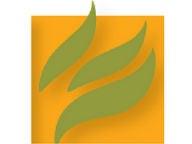 Mint Press News logo 192 x 144