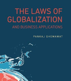 Cover of The Laws of Globalization and Business Applications