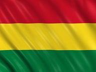 bolivia flag network thumbnail