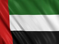 united arab emirates flag network thumbnail