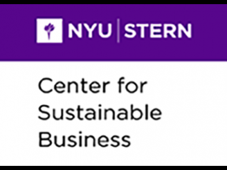 NYU Team Named Finalist in the 2019 Kellogg-Morgan Stanley Sustainable Investing Challenge