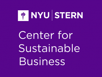 Center for Sustainable Business Logo