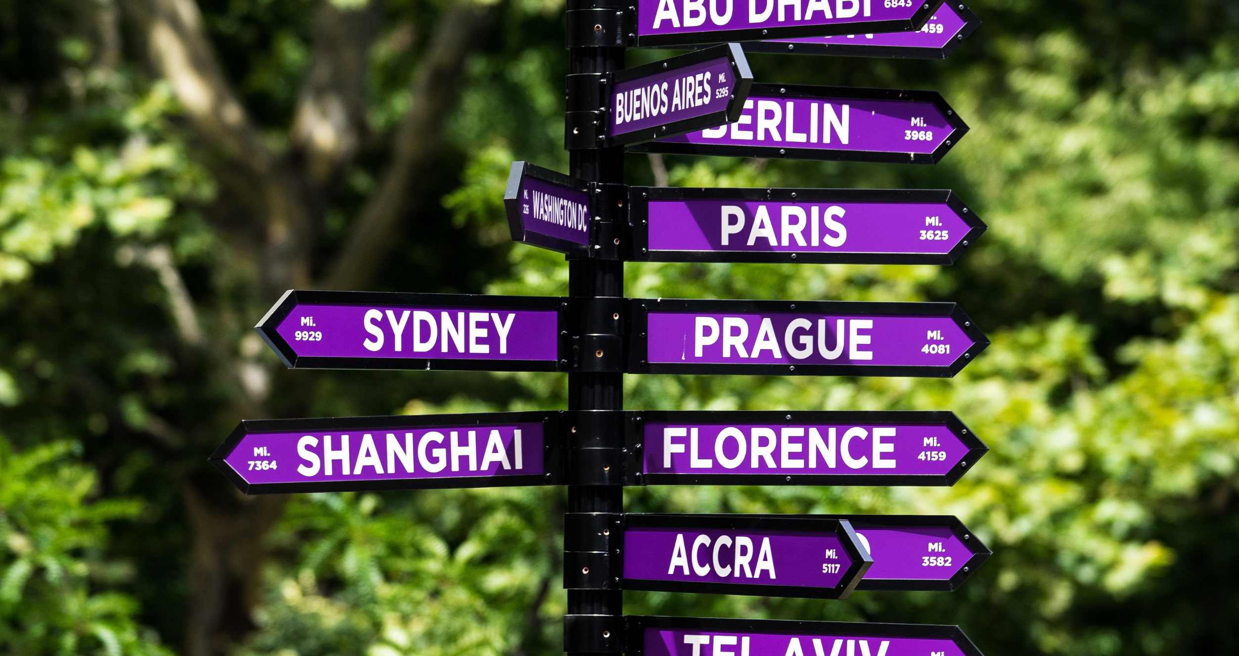 Sign of NYU global locations