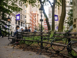 Park benches in Washington Square Park with NYU flags in the background