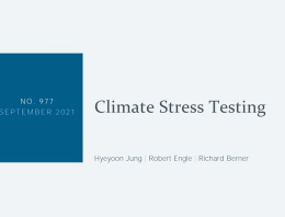 Screenshot of Cilmate Stress Testing NYFed report cover