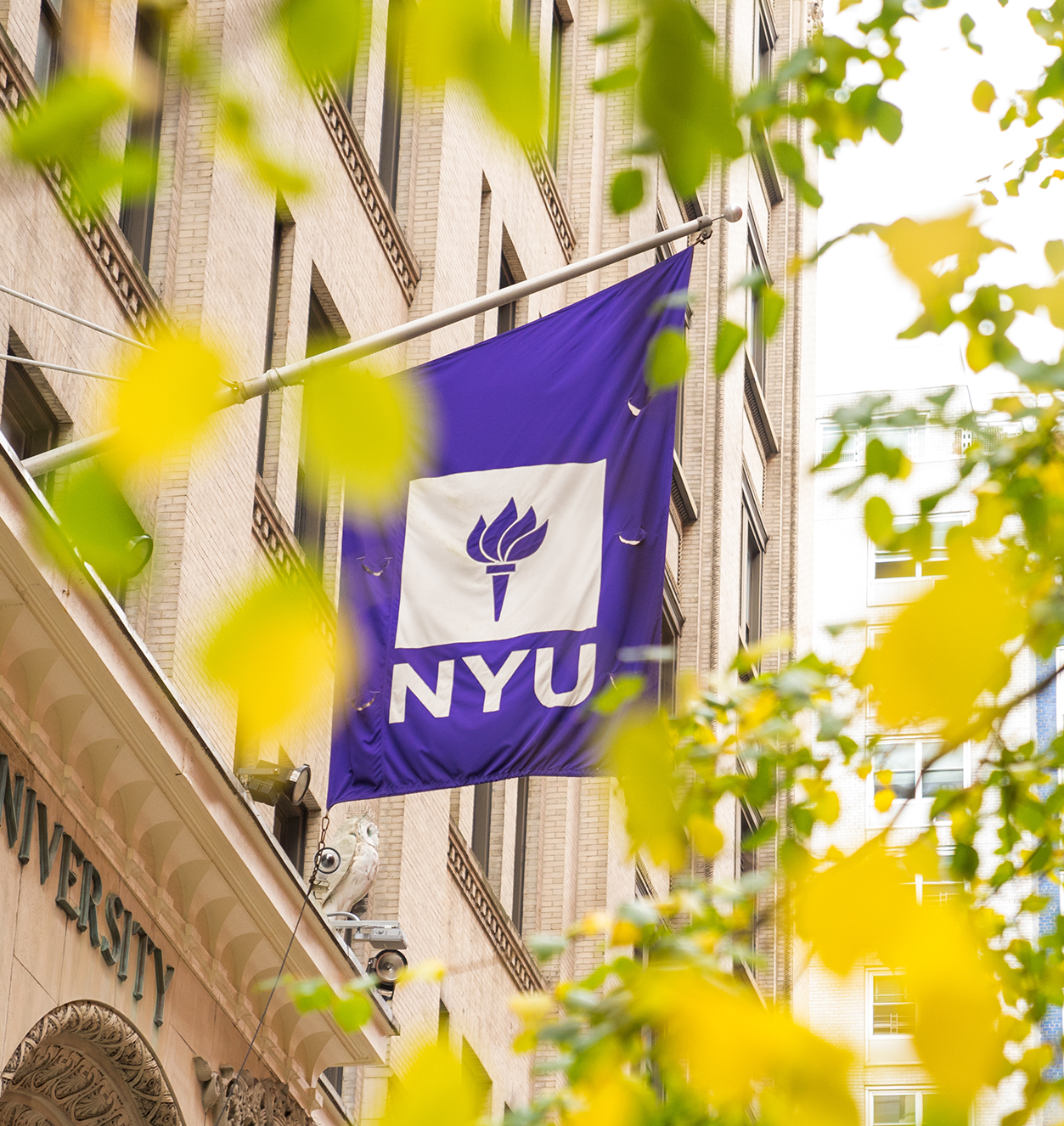 nyu flag outside with tree branches